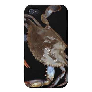 Blue Crab Cases For iPhone 4