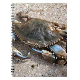 Blue Crab Crawling Notebook