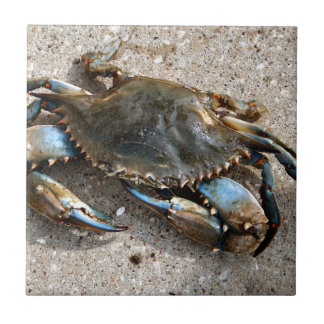 Blue Crab Crawling Tile