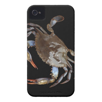 Blue Crab iPhone 4 Cover