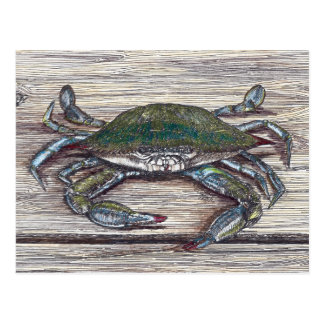 Blue Crab on Dock Postcard