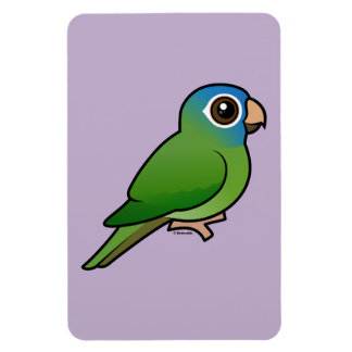 Blue-crowned Conure Magnets