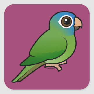 Blue-crowned Conure Stickers