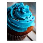 Blue Cupcake Photograph Post Card