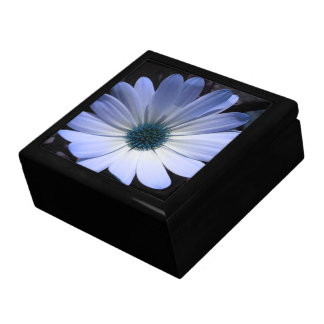 Blue Daisy Flower Gift Box
