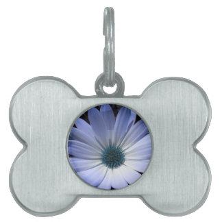 Blue Daisy Flower Pet Tag
