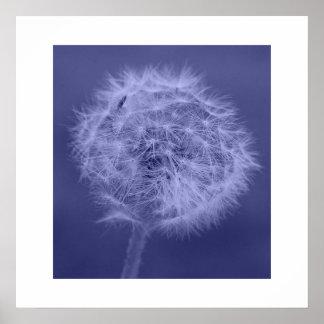 Blue Dandelion Poster/Print Poster