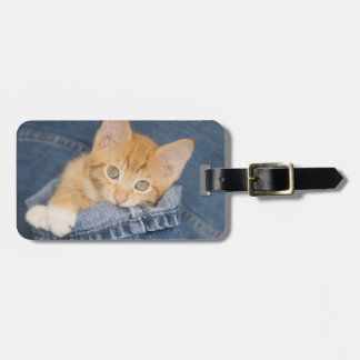 Blue Denim Orange Kitten Luggage Tag