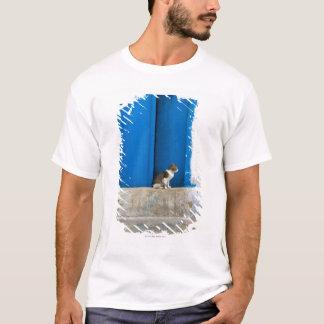 Blue door, Kairouan, Tunisia, Africa T-Shirt