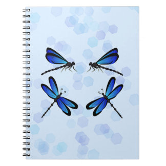 blue dragonflies notebooks