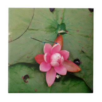 Blue Dragonflies on a pink lotus flower Small Square Tile