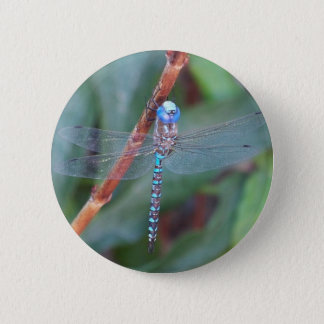 Blue Dragonfly 6 Cm Round Badge
