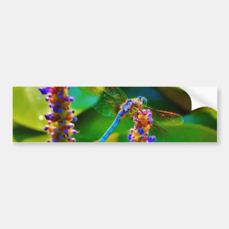 Blue Dragonfly and flowers Bumper Sticker