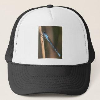 Blue Dragonfly Hat