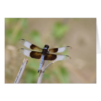 Blue Dragonfly III Greeting Card