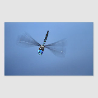 Blue Dragonfly in Flight Rectangular Sticker
