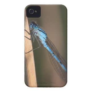 Blue Dragonfly iPhone 4/4S ID Case-Mate