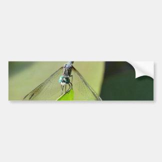 Blue Dragonfly on a green leaf. Car Bumper Sticker