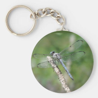 Blue Dragonfly on Perch Basic Round Button Key Ring