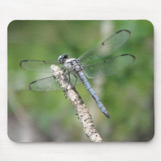 Blue Dragonfly on Perch Mouse Mat