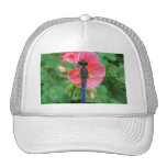 Blue dragonfly on pink flower green background mesh hats