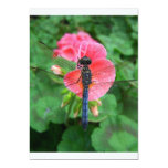 Blue dragonfly on pink flower green background personalized announcement