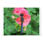 Blue dragonfly on pink flower green background invitation