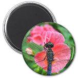 Blue dragonfly on pink flower green background fridge magnet