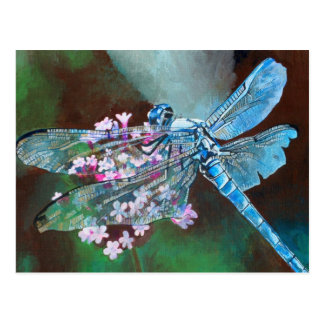 Blue Dragonfly Postcard