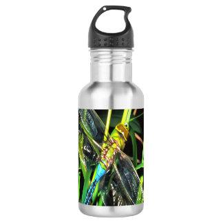 Blue Dragonfly Wings 532 Ml Water Bottle