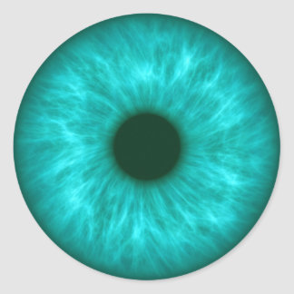 blue eye iris classic round sticker