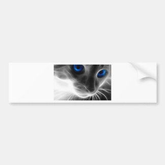 Blue Eyed Black and White Kitty Cat Car Bumper Sticker