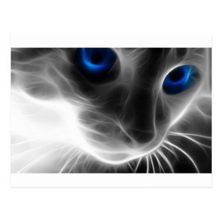 Blue Eyed Black and White Kitty Cat Postcard