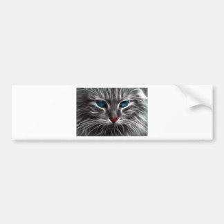 Blue eyed cat bumper sticker