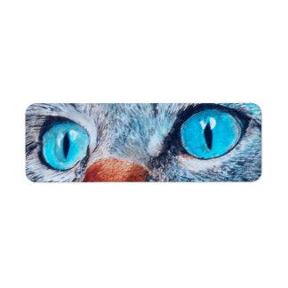 Blue Eyed Cat Return Address Label