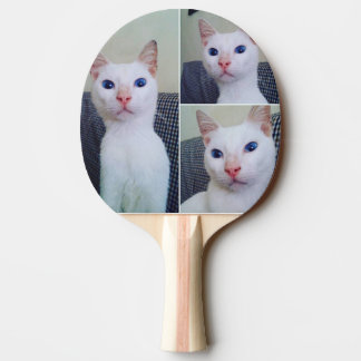 Blue-eyed Cats, Ping Pong Paddle, Red Rubber Back