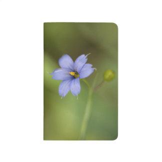 Blue Eyed Grass Wildflower Floral Pocket Journal