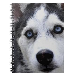 Blue Eyed Husky Notebook