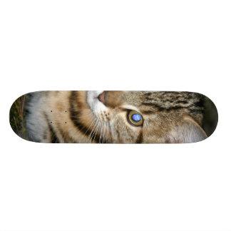 BLUE-EYED KITTY CUSTOM SKATEBOARD