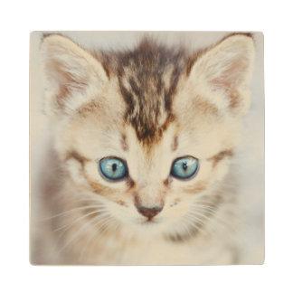 Blue Eyed Kitty Wood Coaster