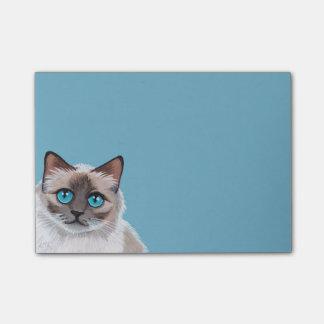 Blue Eyed Ragdoll Cat Portrait Painting Post-it® Notes