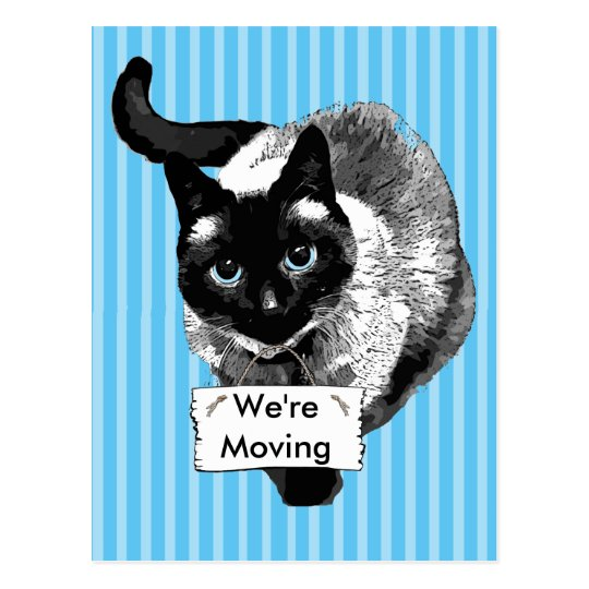 "Blue Eyed Siamese Cat Holding ""We're Moving Sign"