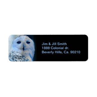 Blue Eyed Snow Owl
