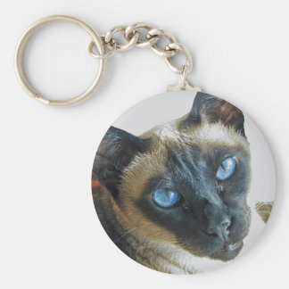 Blue eyes basic round button key ring