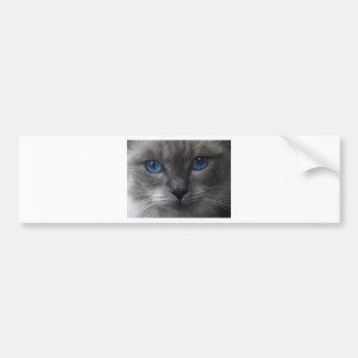 Blue Eyes Bumper Sticker