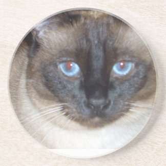 Blue Eyes Coaster