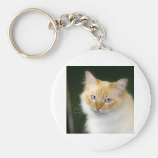 Blue Eyes Key Ring