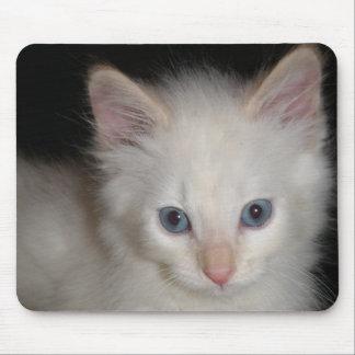 Blue Eyes Kitten Mousepad