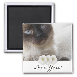 Blue Eye's Kitty Square Magnet