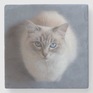 Blue Eyes Stone Coaster